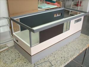 DSCI0199-001